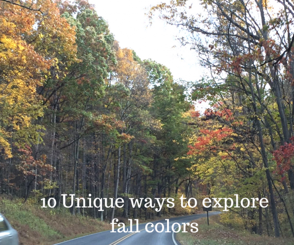 10 Unique ways to explore fall colors