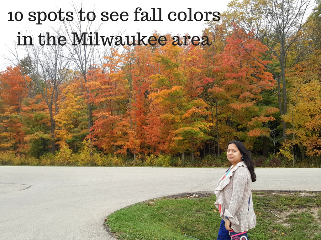 Best fall colors to explore in the Milwaukee area