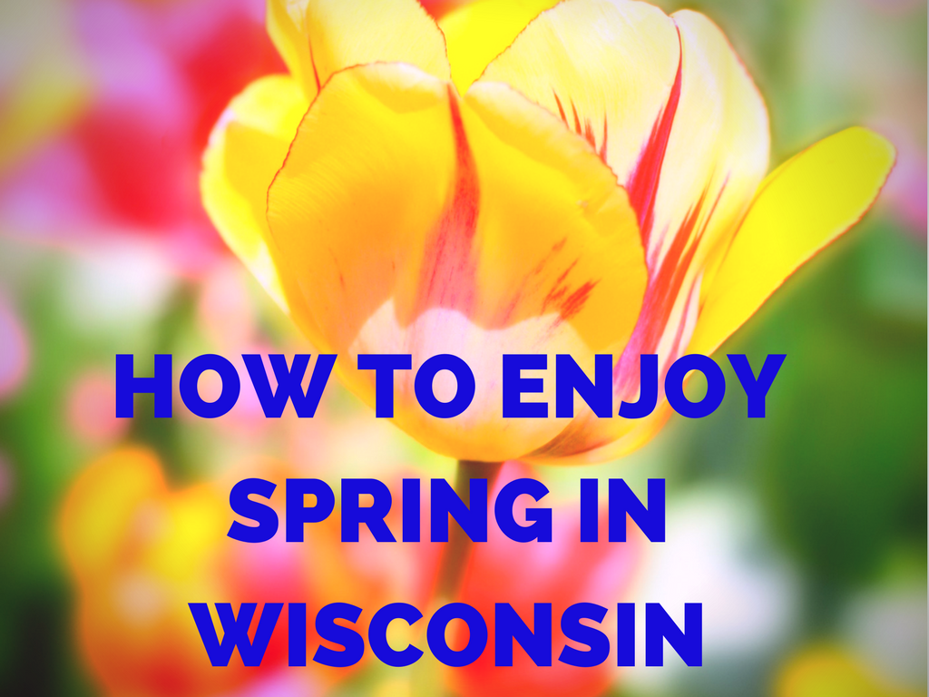 How to enjoy spring in wisconsin