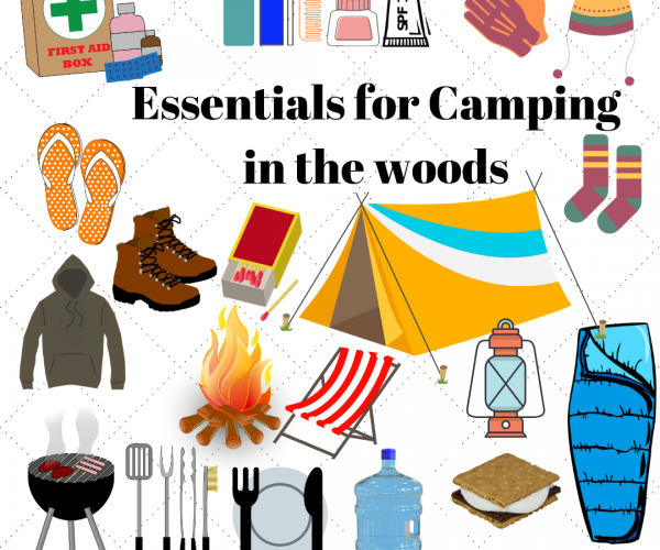Essentials for camping in the woods