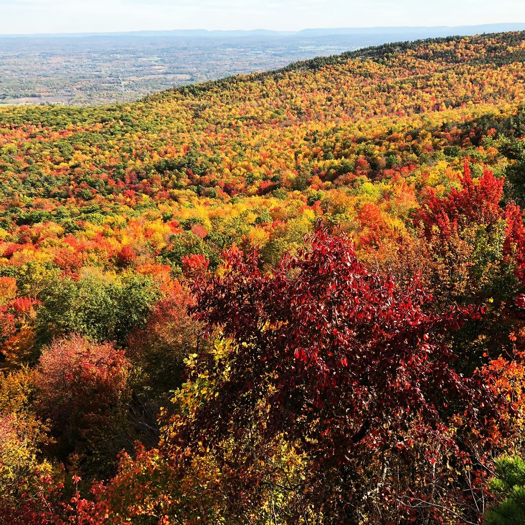 Fall colors in Hudson valley in new york