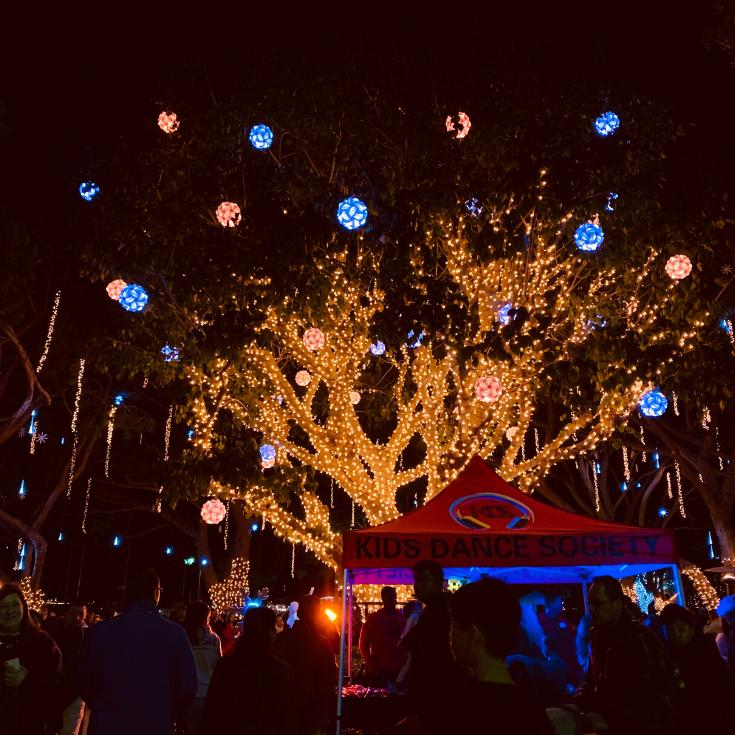 Christmas lights at Burton Chace park