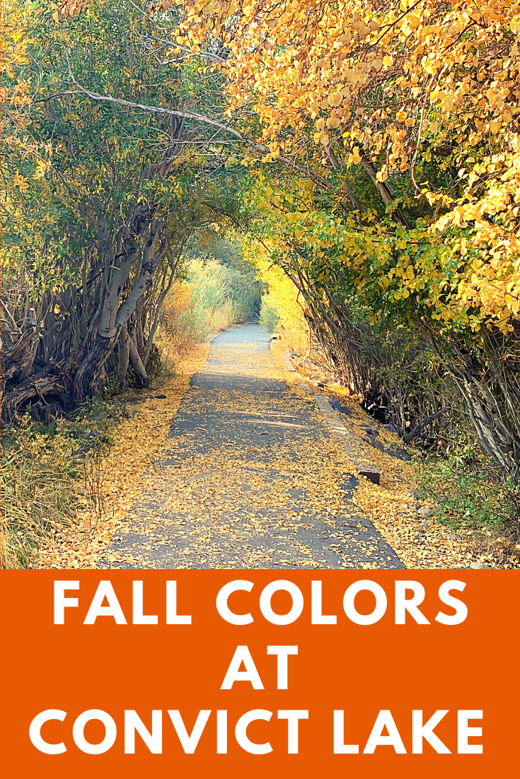 Places to view fall colors in california